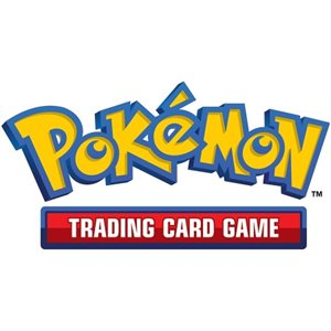 Pokemon: Tag Team Tin