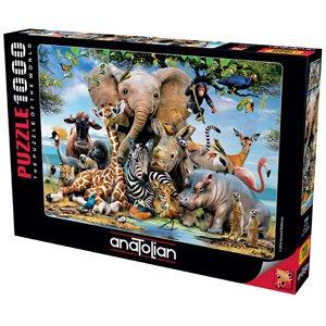 Puzzle: 1000 Africa Smile