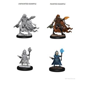 Pathfinder Deep Cuts Unpainted Miniatures: Wave 2: Evil Wizards