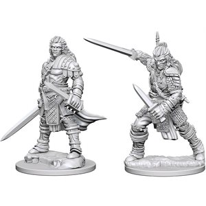 Pathfinder Deep Cuts Unpainted Miniatures: Wave 1: Human Male Fighter
