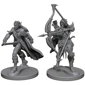 Pathfinder Deep Cuts Unpainted Miniatures: Wave 1: Elf Male Fighter