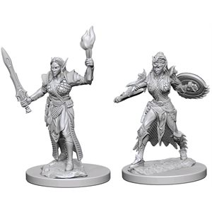 Pathfinder Deep Cuts Unpainted Miniatures: Wave 1: Elf Female Fighter