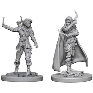 Pathfinder Deep Cuts Unpainted Miniatures: Wave 1: Human Female Rogue