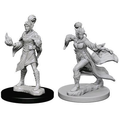 Pathfinder Deep Cuts Unpainted Miniatures: Wave 1: Elf