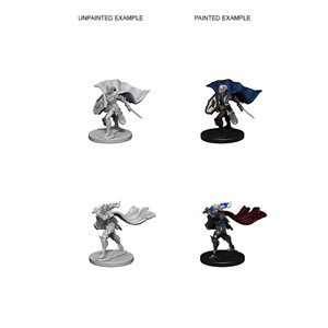 Pathfinder Deep Cuts Unpainted Miniatures: Wave 4: Elf Female Paladin