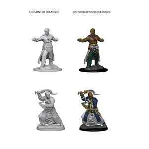Pathfinder Deep Cuts Unpainted Miniatures: Wave 1: Human Male Monk