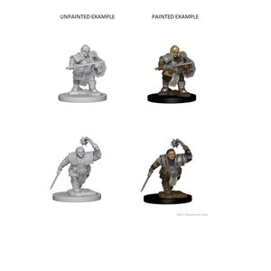 D&D Nolzurs Marvelous Unpainted Miniatures: Wave 2: Dwarf Female Fighter
