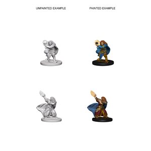 D&D Nolzurs Marvelous Unpainted Miniatures: Wave 4: Dwarf Female Wizard