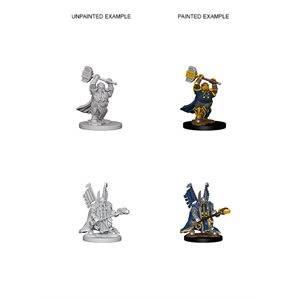 D&D Nolzurs Marvelous Unpainted Miniatures: Wave 4: Dwarf Male Paladin