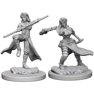 D&D Nolzurs Marvelous Unpainted Miniatures: Wave 1: Human Female Monk
