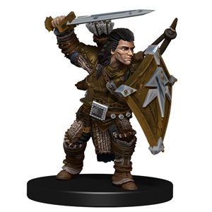 Pathfinder Battles Minis: Iconic Heroes Evolved