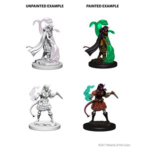 D&D Nolzurs Marvelous Unpainted Miniatures: Wave 4: Tiefling Female Sorcerer