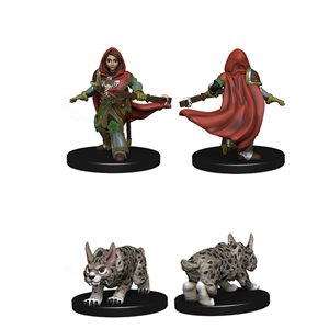 Wardlings RPG figure (Painted): Girl Ranger & Lynx