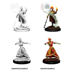D&D Nolzurs Marvelous Unpainted Miniatures: Wave 5: Fire Genasi Female Wizard