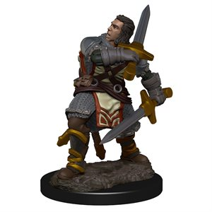 D&D Icons of the Realms Premium Miniature: Human Male Paladin ^ Aug 2019