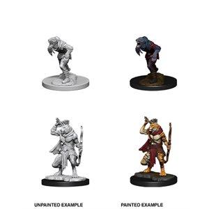 D&D Nolzurs Marvelous Unpainted Miniatures: Wave 11: Wererat & Weretiger