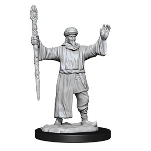 D&D Nolzur's Marvelous Unpainted Miniatures: Wave 13: Human Wizard Male