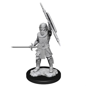 D&D Nolzur's Marvelous Unpainted Miniatures: Wave 13: Human Fighter Male