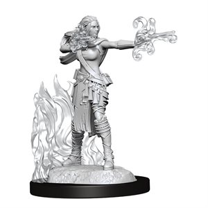 D&D Nolzur's Marvelous Unpainted Miniatures: Wave 13: Multiclass Warlock + Sorc. Fem.
