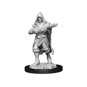 Pathfinder Deep Cuts Unpainted Miniatures: Wave 13: Human Rogue Male