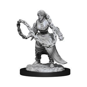 D&D Nolzur's Marvelous Miniatures: Wave 14: Human Monk Female ^ MAR 2021