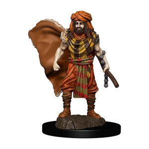 D&D Minis: Icons of the Realms Premium Painted Figures Wave 4: Human Druid Male ^ DEC 2020