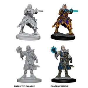 Pathfinder Deep Cuts Unpainted Miniatures: Wave 6: Human Male Wizard